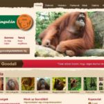 <u>Orangutan.hu</u> teljes weboldal